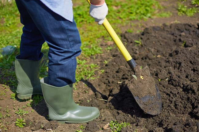 Soil preparation tips from Schwartz Greenhouse Metro Detroit